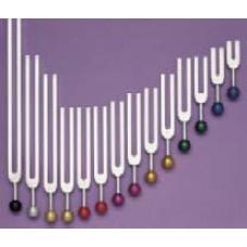 Acu Sound [Principle Meridians]